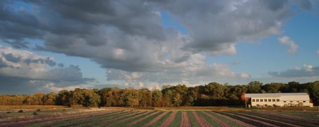 Horst用賣掉Aveda的錢來買了美國Minneapolis的一個島作有機耕種